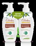 Acheter Rogé Cavaillès Hygiène intime Soin naturel Toilette Intime Sécheresse 2Fl/250ml à BRUGES