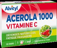 Govital Acerola 1000 à BRUGES