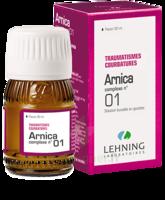 Lehning Arnica Complexe N° 1 Solution Buvable En Gouttes Fl/30ml à BRUGES