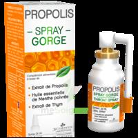 3 Chenes Propolis Spray Gorge Fl/25ml à BRUGES