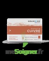 Granions De Cuivre 0,3 Mg/2 Ml S Buv 30amp/2ml à BRUGES