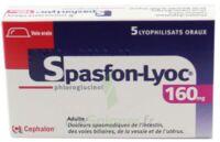 Spasfon Lyoc 160 Mg, Lyophilisat Oral à BRUGES