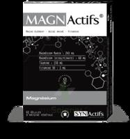 Synactifs Magnactifs Gélules B/60 à BRUGES