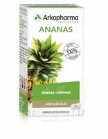 Arkogélules Ananas Gélules Fl/45 à BRUGES