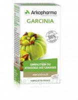 Arkogélules Garcinia Gélules Fl/45 à BRUGES