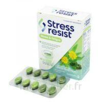 Stress Resist Comprimés Stress & fatigue B/30 à BRUGES