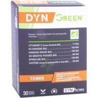 Synactifs Dyngreen Bio Gélules B/30 à BRUGES