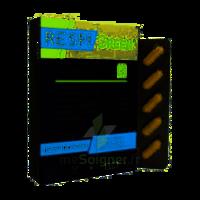 Synactifs Respigreen Bio Gélules B/10 à BRUGES