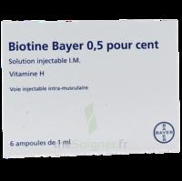 Biotine Bayer 0,5 Pour Cent, Solution Injectable I.m. à BRUGES