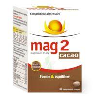 MAG 2 CACAO, fl 60 à BRUGES
