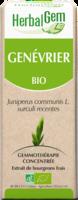 Herbalgem Genevrier Macerat Mere Concentre Bio 30 Ml à BRUGES