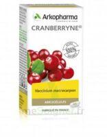Arkogélules Cranberryne Gélules Fl/45 à BRUGES