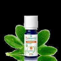 Puressentiel Huiles essentielles - HEBBD Ravintsara BIO* - 5 ml à BRUGES