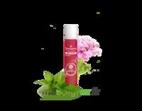 PURESSENTIEL ANTI-PIQUE Roller 11 huiles essentielles à BRUGES