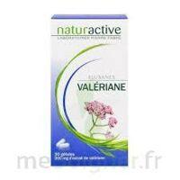 Elusanes Valeriane 200 Mg, Gélule Pilul/30 à BRUGES