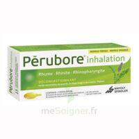 Perubore Caps Inhalation Par Vapeur Inhalation Plq/15 à BRUGES
