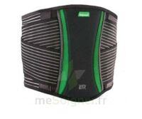 Dorsamix Taille 2 Noir/Vert hauteur 26cm à BRUGES