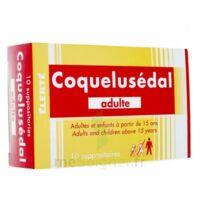 Coquelusedal Adultes, Suppositoire à BRUGES