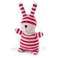 Soframar Bouillotte peluche micro-ondable Lapin Socky Dolls à BRUGES