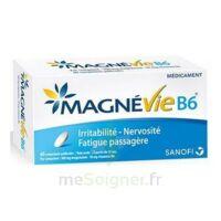 Magnevie B6 100 Mg/10 Mg Comprimés Pelliculés Plaq/60 à BRUGES