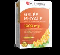 Forte Pharma Gelée Royale 1000 Mg Solution Buvable 20 Ampoules/10ml à BRUGES