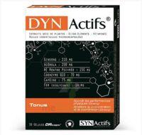Synactifs Dynactifs Gélules B/30 à BRUGES