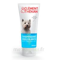 Clément Thékan Shampooing Poils Blancs T/200ml à BRUGES