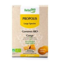 Herbalgem Propolis Large Spectre Gomme Bio B/24 à BRUGES