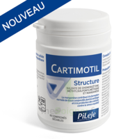 Pileje Cartimotil Structure 60 Comprimés Sécables à BRUGES