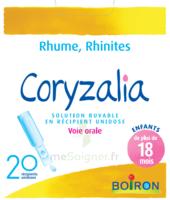 Boiron Coryzalia Solution Buvable Unidose B/20 à BRUGES
