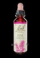 Fleurs De Bach® Original Pine - 20 Ml à BRUGES
