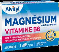 Govital Magnésium Vitamine B6 Comprimés B/45 à BRUGES