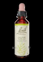 Fleurs De Bach® Original Olive - 20 Ml à BRUGES