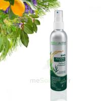 Naturactive Assaini'spray 200ml à BRUGES