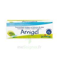 Boiron Arnigel Gel T(alumino-plastique)/45g à BRUGES