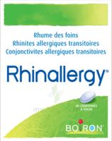 Boiron Rhinallergy Comprimés B/40 à BRUGES