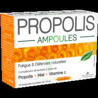 3 Chenes Propolis Solution Buvable 10 Ampoules/10ml à BRUGES