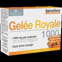 3 Chenes Phytotherapie Familiale Solution Buvable Gelée Royale 1000 10 Ampoules/10ml à BRUGES