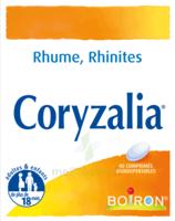 Boiron Coryzalia Comprimés Orodispersibles à BRUGES