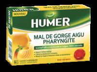 Humer Pharyngite Past Mal De Gorge Baies Sauvages à BRUGES