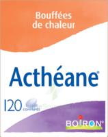 Boiron Acthéane Comprimés B/120 à BRUGES