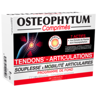 Osteophytum Comprimés Renfort Et Mobilité Articulaire B/60 à BRUGES